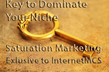 Niche Saturation Marketing the key to dominating your niche